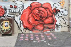 Tag, rue Aimé Boussange, Lyon 1er