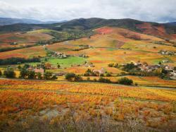 Mont Brouilly, Beaujolais