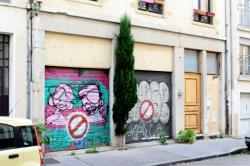 Cyprès de trottoir, Lyon 7e