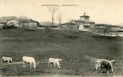 Albigny-sur-Saône (Rhône) : Vue générale (2)