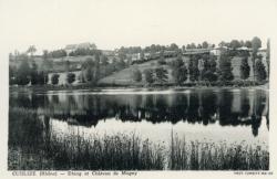 Cublize (Rhône) : Etang et château de Magny