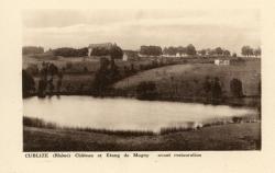 Cublize (Rhône) : Château et étang de Magny avant restauration