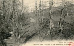 Bessenay (Rhône) : La passerelle du Crapet