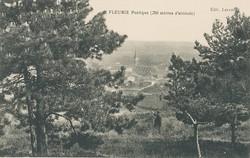 Fleurie (Rhône) : Poétique (250 mètres d'altitudes)