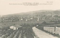 Fleurie (Rhône) : Ses vignes