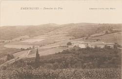 Emeringes (Rhône) : Domaine des Pins