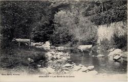 Annonay (Ardèche) : Les Bords de la Cance