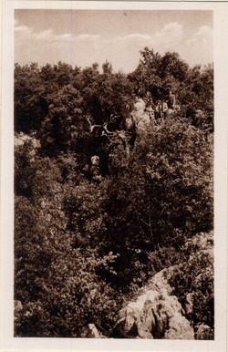 """Aven d'Orgnac (Ardèche) Vue de l'orifice extérieur, par où le 19 août 1935, M. R. de Joly, fit l'exploration du """"Bretras"""""""
