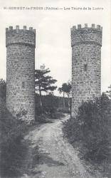 Chevinay (Rhône) : Les tours de la Luère