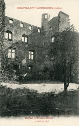 Châtillon (Rhône) : Intérieur des ruines du château