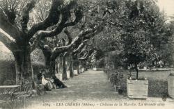 Les Chères (Rhône) : Château de la Marelle - La grande allée