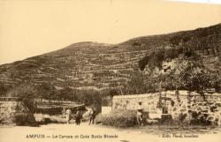 Ampuis (Rhône) : Le Carcan et Cote Rotie Blonde