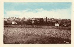 Blacé (Rhône) : Les Vières