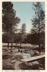 Environs d'Amplepuis (Rhône) : Planche du Paradis