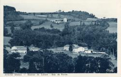 Aveize (Rhône) : Hameau de Lamure - Bois de Terron