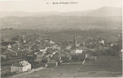 Bois-d'Oingt (Rhône)