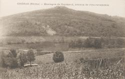 Chénas (Rhône) : Montagne de Raymond, coteaux de vins renommés