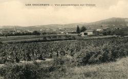Chénas (Rhône) : Vue panoramique. Les Deschamps.