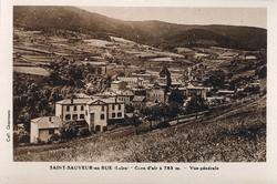 Saint-Sauveur-en-Rue (Loire) : Cure d'air à 783 m. ; Vue générale