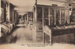 Lyon : Musée Colonial : 28 Boulevard de Belges : Une vue de la Grande Galerie