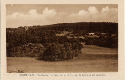 Cruseilles (Hte-Savoie) : Vue sur la forêt et sur le Château des Avenières