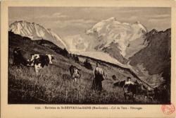 Environs de St-Gervais-les-Bains (Hte-Savoie) : Col de Voza ; Pâturages