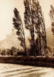 Au bord du Rhône