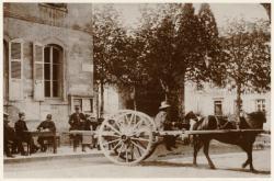 [Le Conseil de révision des chevaux à Denicé (Rhône), au début du XXe siècle]