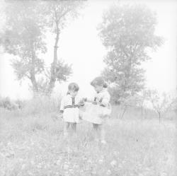 [Deux petites filles habillées à l'identique dans un champ fleuri]