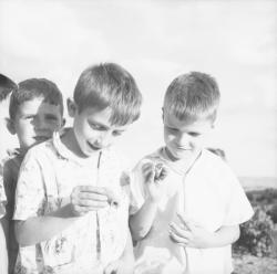 [Deux garçons se montrent leurs escargots]
