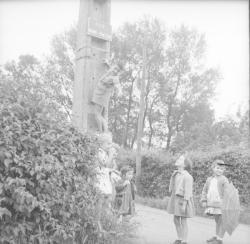[Groupe d'enfants à la campagne, l'un deux grimpe sur un pylône]