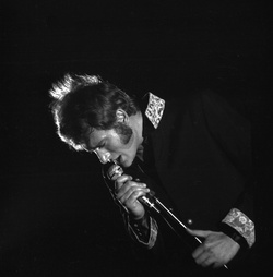 [Johnny Hallyday au Théâtre antique de Vienne]