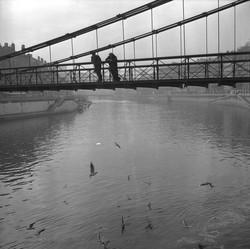 Espaces Urbains : Lyon -- les fleuves de Lyon