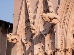 La cathédrale Saint-Jean, gargouilles