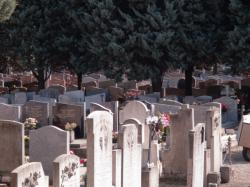 [Ancien cimetière de la Guillotière]