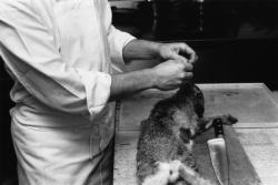 [La préparation du lapin (Christian Frigo)]