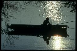 Pêcheur sur le lac Tête d'Or, retour à la sérénité
