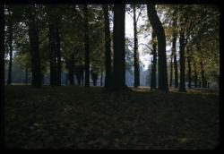 Le Parc de la Tête-d'Or en automne