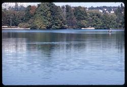 Parc de la Tête-d'Or : le lac