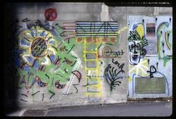 Murs de Lyon