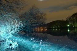Le lac du parc de la Tête d'Or, Fête des Lumières 2011