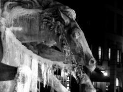 Les naseaux glacés