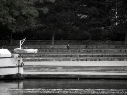 Rejoindre l'eau 07/12 : A coques