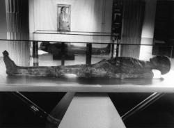 """[Museum d'histoire naturelle de Lyon : exposition """"Momies""""]"""