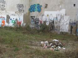 Dessins Sauvages sur des murs de friche