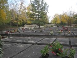 [Parc-cimetière du Grand-Lyon à Bron : parcelle de tombes]