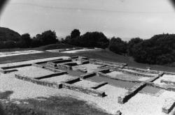 [Site archéologique de Larina (Isère)]