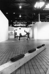 [Espace lyonnais d'art contemporain (Elac)]