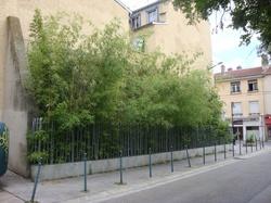 [Jardin de proximité, rue Antoine-Rosset]