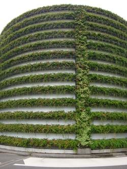 Mur végétal de Perrache